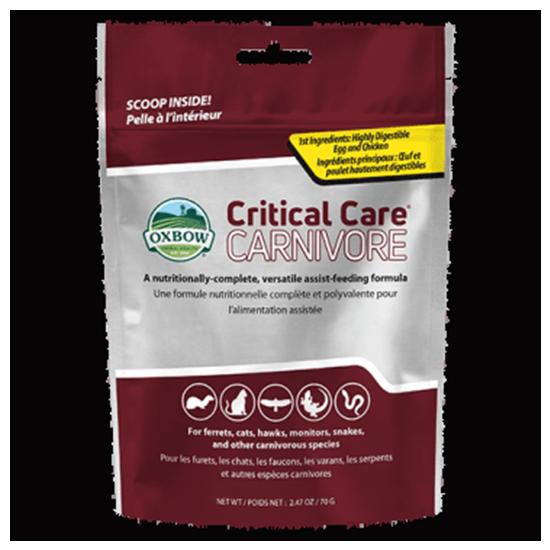 Critical Care – Carnivore