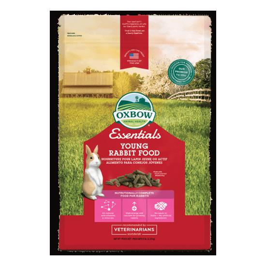 Essentials – Young Rabbit Food